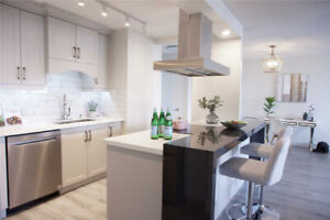 Professionally Designed Renovated Open Concept Kitchen