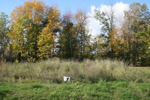 BEAUTIFUL LOTS FOR SALE IN LONG SAULT