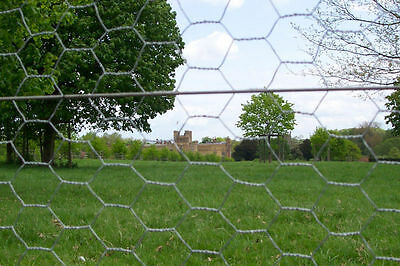 1.5m (5ft) x 25m roll of galvanised chicken rabbit dog wire wire mesh netting