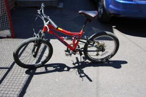 Youth Bicycle - Nakamura