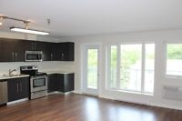 Large Modern Two Bedroom Condo For Rebt