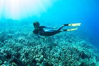 Freediving/apnea partner needed