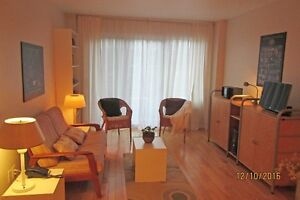BEAUTIFUL 5 1/2 ST. LAURENT NEAR METRO & ALL SERVICES