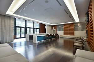 Renovated Gorgeous 2 bdr/2 bth Condo at Luna CityPlace Downtown