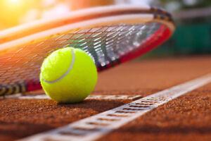 Tennis Racquet / Racket / Balls / Birdie / Shuttlecock