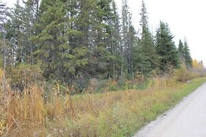 10 Acres of Raw Land at Kivimaa/Moonlight Bay Turtle Lake