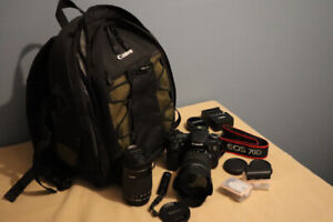 Canon EOS 70d with 2 STM Lenses