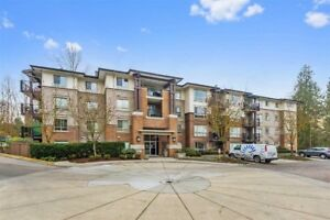 Beautiful 2 Bed 2 Bath Apartment in Maple Ridge for Rent