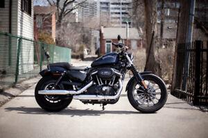 883 XL Iron Sportster Harley Davidson (Low KM's)