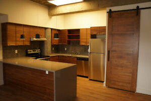 Algonquin Lofts - 2 bedroom, 2 bathroom luxury suite