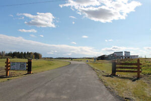 Country Estate Living in Spring Meadow Estates! Edmonton Edmonton Area image 13
