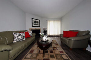 Fully renovated 2 Bedrooms condo!