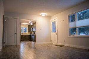 Fully Renovated Pet Friendly 3 Bedroom!