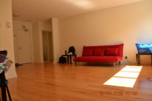 Fully furnished Nice apartment in downtown for rent/sublet