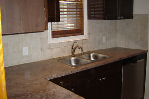 Brothers Home Improvements/ Insurance contracts/ BATHROOMS Windsor Region Ontario image 10
