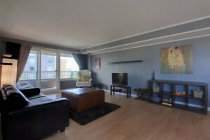 FULLY FURNISHED Downtown condo, River view!  $1500/mo