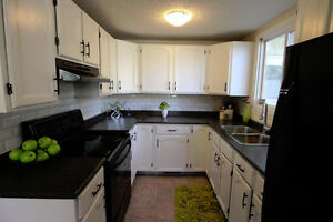 BEAUTIFULLY RENOVATED 3 Bedroom Townhouse-Clareview-Pet OK