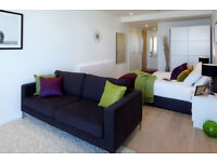 Elephant and Castle SE1. Large, Light & Luxurious Self Contained Studio Flat in Iconic Strata