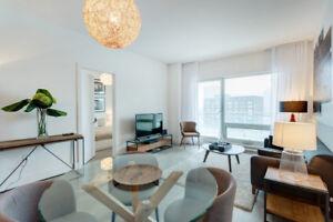 Merveilleux condo 2 chambres à louer - centre ville