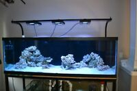 180 GL Tank, metal stand and light stand for sale