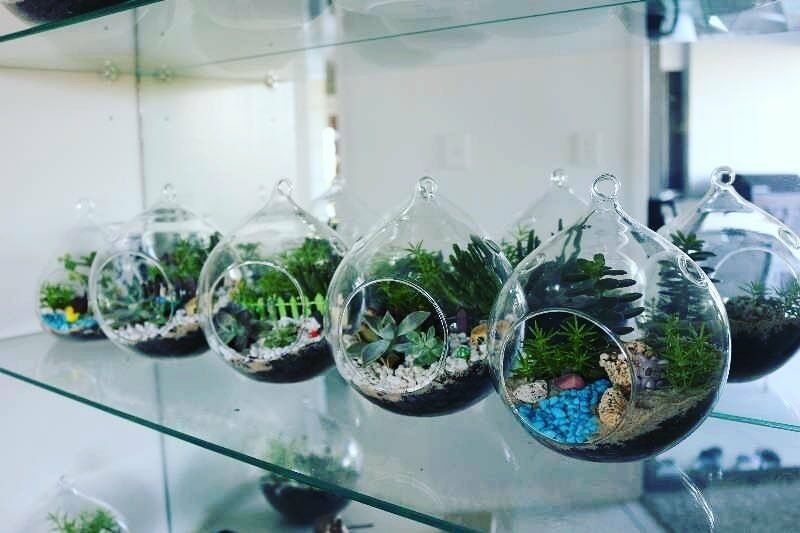 MiniGarden_studio