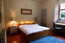 Lovely room to rent in Haymarket!!