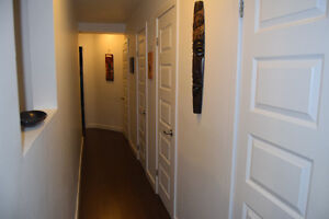 3 Bedroom - Great Location - FULLY FURNISHED Kitchener / Waterloo Kitchener Area image 5