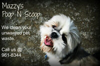 Pet waste removal - we clean your dog poop in your yard.