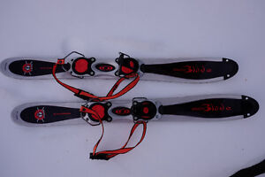 Salomon Buzz SnowBlade -pair