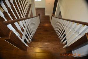 For Sale 4 B/R detached home Kitchener / Waterloo Kitchener Area image 9