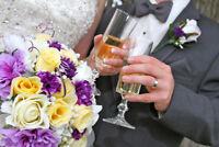 ARTISTIC WEDDING PHOTO'S & VIDEO
