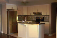 Modern, upgraded 2 bedroom plus den condo for rent in Orleans
