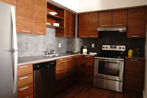 Algonquin Lofts - 2 bedroom, 1.5 bath with sunset views
