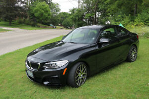 2014 BMW 228i M package Coupe (2 door)