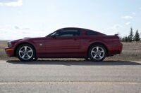 2009 Ford GT Coupe (2 door)
