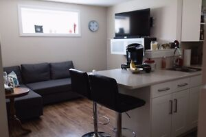 Calmar basement suite near airport and Leduc