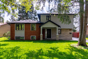 Recently Renovated Luxury Home for Rent in Downtown Burlington!