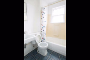 2 Bedroom apartment available Nov 1