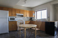One bedroom walkout basement suite in NW-$1100/mo.avail Sept 1