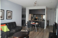 1000 Sq Ft 2+1 condo By Lake 8km to Downtown