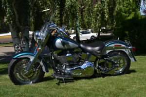 2004 HD Soft Tail - REDUCED to $14,000.00