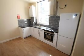 beautiful 3 bedroom newly renovated flat secure parking and cctv