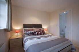 En Suite Double And Double Bedroom Available - SPEEDY1746