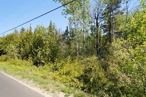 VACAND LAND 25 ACRES! TREED YEAR ROUND ROAD