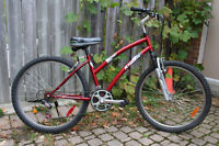Adult Raleigh Mountain Bike. Perfect Condition Ready to Ride.