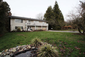 4bd upper level house on an acreage available for rent