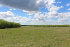 12.51 Acres at Beautiful Turtle Lake! -Sunset View