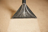 Carpet Cleaning Specialist and More - Quantum Cleaning