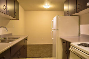 Large and Quiet 2 Bedroom Suite - September 1st