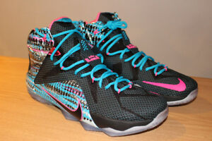 Lebrons size 12 Lifestyle and Chromosone
